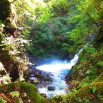 気軽に渓流ハイキング 西沢渓谷のススメ