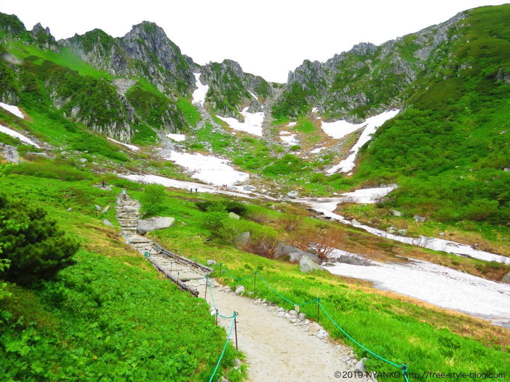 ハイキング(お花畑)コース